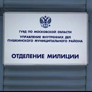 Отделения полиции Пушкино